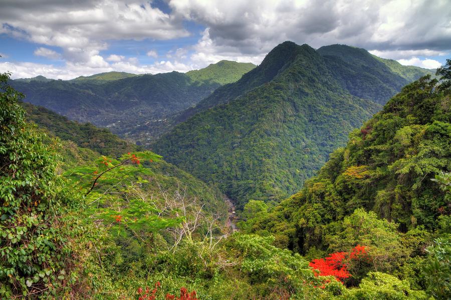 Floresta Tropical de El Yunque, em Porto Rico - um dos destino do Allure of the Seas